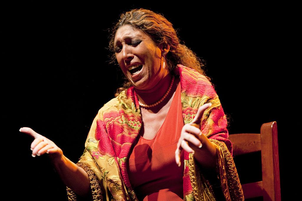 Esperanza Fernández, 2009